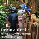 nekocante-3